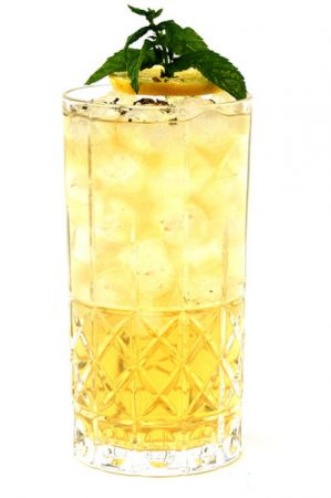 te-tonic-infusions-and-botanicals-for-mixology-the-whisky-co (4)